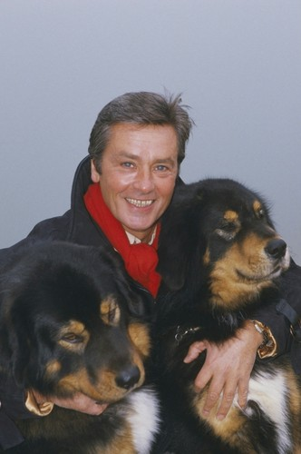 Alain-and-his-love-for-animals-alain-delon-34236793-332-500